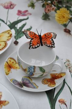 A teacup from a tabletop created by interior designer Peggy Oberlin - Anyone know what this china pattern is??