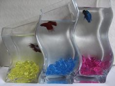 Betta fish on pinterest betta fish tank fish tanks and for How to make ice in a fish tank