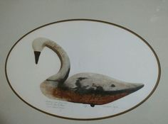 Lawrence Snyder Whistling Swan Decoy Ethan Allen Limited Edition Signed Etching | eBay