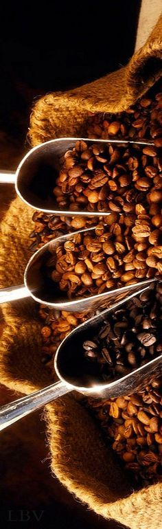 #youneedcaffeveloce #coffee #beans