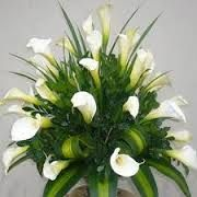 Resultado de imagem para arreglos florales modernos