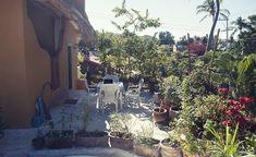 Garden San pancho Me