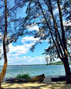 Loving the peacefulness here  #coneyisland #beach #nature #naturelovers #naturephotography #instadaily by shelajoe