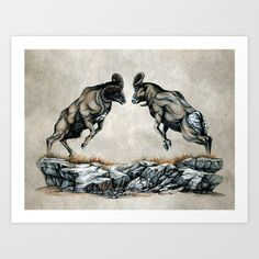 I was inspired to draw a whole collection of animals fighting after watching a series of nature documentaries on Netflix. The first drawing I made was a scene depicting two stallions in battle. This bighorn drawing is the second.