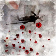 Poppies Remembrance (Armistice) Day November 11 - Never forget - Always remember