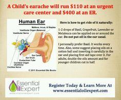 Social studies ears little ones oil of the ear kindergarten children