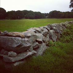 Field view #farmlife  (Taken with Instagram at Wynchinford Farm)