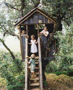 baumhaus-bauen-für-kinder-mit-einer-treppe- mitten im wald - Baumhaus bauen – schaffen Sie einen Ort zum Spielen für Ihre Kinder!