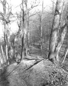 This a rare look at an ancient Indian trail that was used for thousands of years. This trail was the portage from the St. Joseph River to the Kankakee River. LaSalle walked this trail in 1682 on his way to discover the Mississippi River.  It is located in downtown South Bend, Indiana.