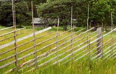 Riukuaita - Viro aidasaita aita niitty puuaita riu'ut riuku riukuaita seipäät särentöaita