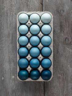 Você pode criar esta exposição dramática com apenas dois frascos 0,25 onças de corante azul você já pode ter na cozinha.  Prepare seis copos de 12 onças, rotulados de A a F. Adicione uma xícara de água fervente e duas colheres de chá de vinagre branco para cada um e mexa, usando uma colher em separado para cada vidro.  Em seguida, misturam-se na cor como se segue: A, duas gotas;  B, seis gotas;  C, 10 gotas;  D, 20 gotas;  E, 45 gotas;  F, 60 gotas.  Mergulhe um ovo cozido em cada copo…