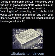 """"""" holy-crap-someone-finally: """" ultrafacts: """" To get around prohibition, people sold bricks of grape concentration that came with a 'warning' teaching people how to make wine. The More You Know, Good To Know, Just For You, Did You Know, Wtf Fun Facts, Strange Facts, Crazy Facts, Interesting History, Interesting Facts"""