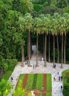 Greece Travel Inspiration - National Gardens, Syntagma,  Athens | Greece // by dannyb