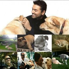 """10 Likes, 1 Comments - Wham Fan (@whamfan112) on Instagram: """"#georgemichael an his dogs"""""""