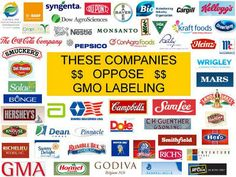 Genetically-Engineered foods are a hot topic in America at the moment. So hot in fact, that Monsanto and its cronies are throwing millions into another campaign to defeat GMO-labeling initiatives in Colorado and Oregon. Both states will be voting on whether or not to require labels on food that contains genetically engineered ingredients next week.…