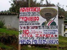 Denuncia de pueblo de Mitzitón: depredación de los bosques, complicidad del gobierno