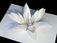 Intricate Pop-Up Sculptures Are Tiny Feats of Engineering   Organic-looking pieces like this flower are the most challenging.  Peter Dahmen    WIRED.com