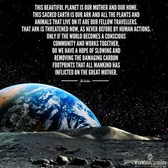 This beautiful Planet is our mother and our home. This sacred Earth is our ark and all the plants and animals that live on it are our fellow travellers. That ark is threatened now, as never before by human actions. Only if the world becomes a conscious co