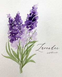 watercolor art flowers * watercolor art for beginners _ watercolor art easy _ watercolor art ideas _ watercolor art for beginners simple _ watercolor art abstract _ watercolor art flowers _ watercolor artists _ watercolor art for beginners tutorials Watercolor Painting Techniques, Watercolor Projects, Easy Watercolor, Watercolor Cards, Floral Watercolor, Watercolor Paintings, Watercolors, Watercolor Flowers Tutorial, Body Painting