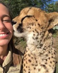 Worse Ways To Start A Day Wild Cat Conservation Centre Wilberforce Australia Video By Wildcatcentre Jj Forum Likers Followe Wild Cats Crazy Cats Animals