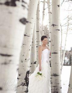 Winter Wonderland Wedding Dress. Michelle and Damien, photography and film 888.301.6919
