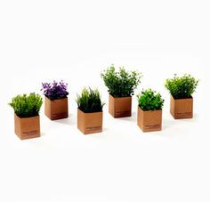 Picture of 7IN GREENERY HERBS