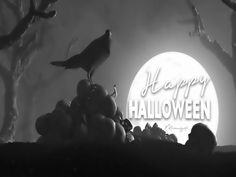 Mimi Gif: Halloween 27 September, Halloween Gif, Wallpaper Space, Gifs, Movie Posters, Decorating, Instagram, Awesome, Art