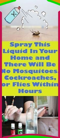 Essential Oil Uses, Young Living Essential Oils, Fly Spray, Insecticide, Natural Pesticides, Health Magazine, Natural Cleaning Products, Pest Control, Bug Control