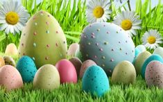 Purchase Easter Day Eggs Flowers Photography Backdrop Prop Photo Background from Andrea Marcias on OpenSky. Background For Photography, Photography Backdrops, Flower Photography, Photomontage, Cheap Backdrop, Easter Wallpaper, Blue Sky Background, Floor Cloth, Montage Photo