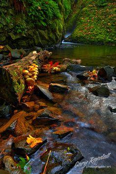 Autumn on Bridal Veil Creek