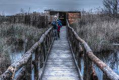 riserva naturale by mtenerani. @go4fotos
