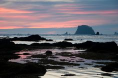 Ozette Triangle Loop  Olympic National Park