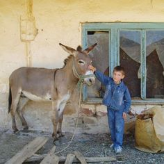 """""""My host brother with the family donkey in Buzalkovo, Macedonia."""" There are more than 120 Volunteers in Macedonia working with their communities on projects in education and community economic development. During their service in Macedonia, Volunteers learn to speak local languages, including Albanian and Macedonian. More than 685 Peace Corps Volunteers have served in Macedonia since the program was established in 1996.   #Macedonia #family #donkey #peacecorps #cute #travel #explore…"""