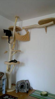 Katzen Kratzbaum bauen