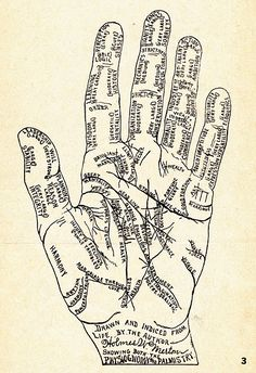 palmistry charted