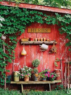 25 Excellent DIY Backyard Decoration With Painted Shed Ideas Vintage Gardening, Vintage Garden Decor, Organic Gardening, Country Garden Decorations, Gardening Tips, Design Jardin, Garden Design, Painted Shed, Virginia Creeper