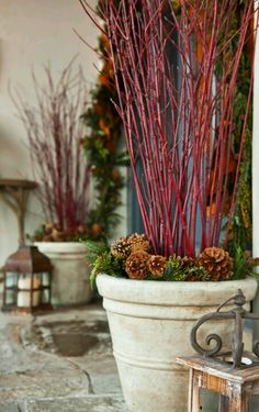 Front porch- urns with red limbs of dogwoods and sprigs of evergreen and pinecones.
