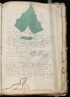 The Voynich Manuscript: unknown language, 15th Century