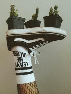 Follow @pippi_soul #green #aesthetic #vans