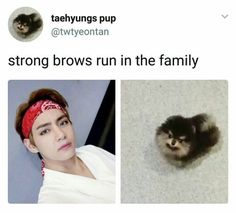 Taehyung and his puppy bts v meme kpop tae Bts Boys, Bts Bangtan Boy, Bts Jimin, K Pop, Mal Humor, Bts Memes Hilarious, Bts Tweet, After Life, V Taehyung