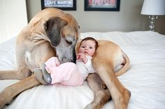cute-babies-and-their-big-dogs-18