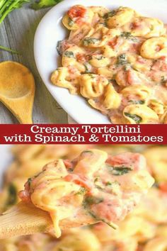#Grilling #ideas #for #dinner #pasta #tortellini Det kan vara svårt att hitta en utsökt pasta middag i en maträtt men denna krämiga Tortellini brp classfirstletterWe invent our website for the kramiga TopicPlease scroll down with the ultimate content about menpDet kan vara svårt att hitta en utsökt pasta middag i en maträtt men denna krämiga Tortellini  pins are as aesthetic and useful as you can use them for decorative purposes at any time and add them to your site or profile at any time If… Healthy Pasta Recipes, Easy Dinner Recipes, Vegetarian Recipes, Easy Meals, Keto Recipes, Dinner Ideas, Vegetarian Chili, Easy Recipes, Cooking Recipes