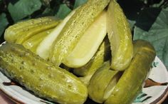 Pickling cucumbers fermenting in the sun. Pickling Cucumbers, Hungarian Recipes, Old Recipes, Pickles, Traditional, Canning, Dinner, Fruit, Recipes