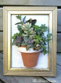 31 Affordable Succulent Wall Art Design Ideas To Display Houseplants - Many office interior design companies design interiors with easy and affordable ways in which your company can incorporate color into a workspace. Succulent Frame, Vertical Succulent Gardens, Succulent Wall Art, Succulent Gardening, Succulent Arrangements, Succulent Terrarium, Planting Succulents, Garden Pots, Succulent Ideas