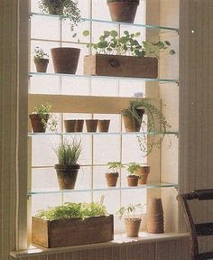 Add glass shelves to a window in your kitchen or dinning room for herbs.
