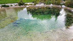 Koupací jezírko | Stavba jezírek Swimming Pools, Aquarium, Nature, Horse Farms, Farmhouse, Natural Swimming Pools, Pond, Swat, Water