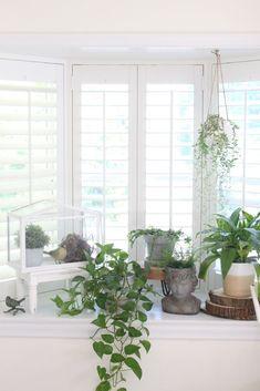 41 Best Bay Window Decor Images