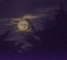 Setting Super Moon by Paul Brewer