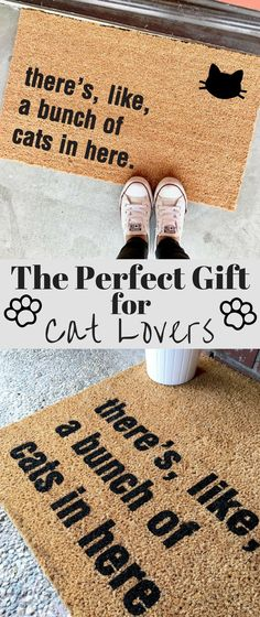 """THE ORIGINAL bunch of cats in here™️ doormat - 18""""x30"""" - cat lover - funny doormats - cat lady - housewarming gift - the cheeky doormat #ad #gifts #catlover #petgifts"""