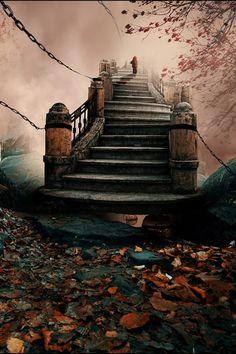 A Step From Heaven by Caras Jonut